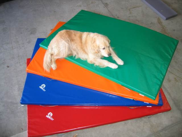 Gym Play Mat - 0.9m x 1.5m x 50mm Mat